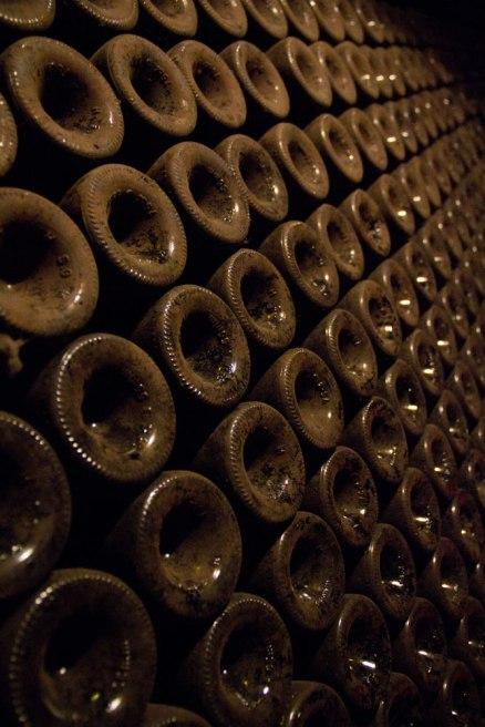 Wine-Tasting-3
