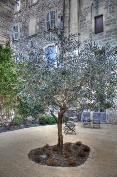 Apartment Olive Tree