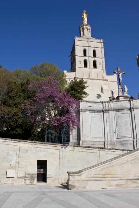 Avignon Papal Palace