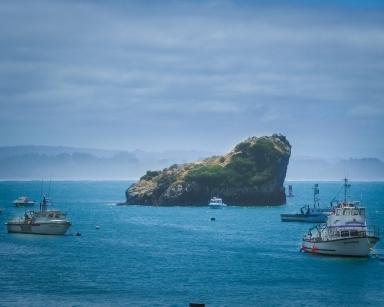 Boats along the blue Oregon coast.