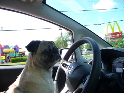 Can we go to McDonalds mom? Please, please, please?