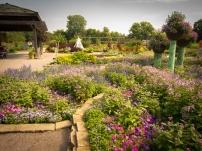 Idea Garden2