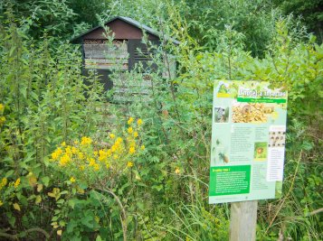 An insect hotel would be worst nightmare...